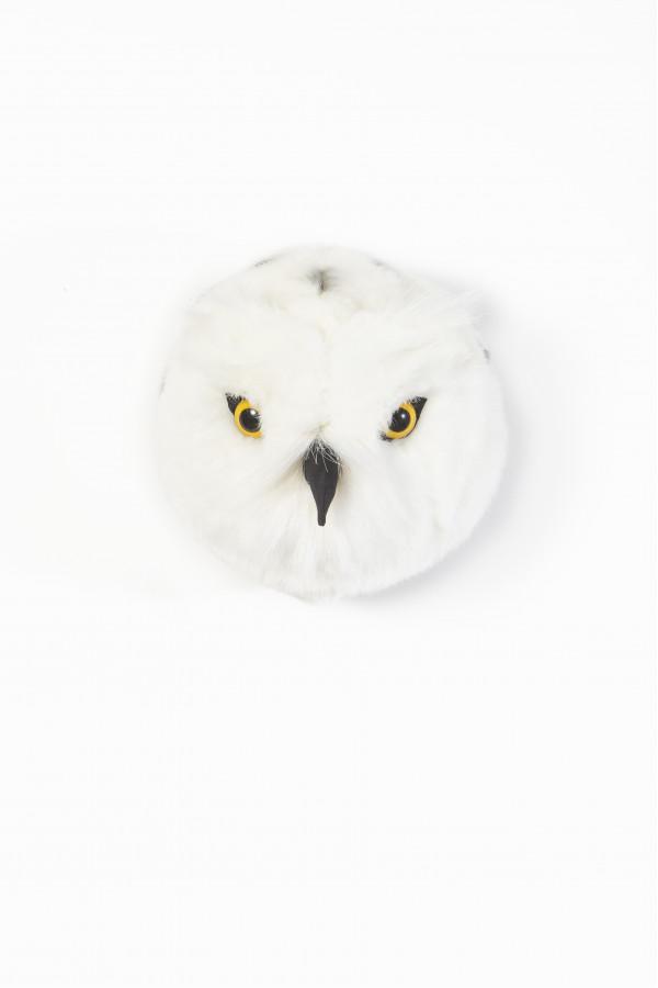 OWL CHLOE