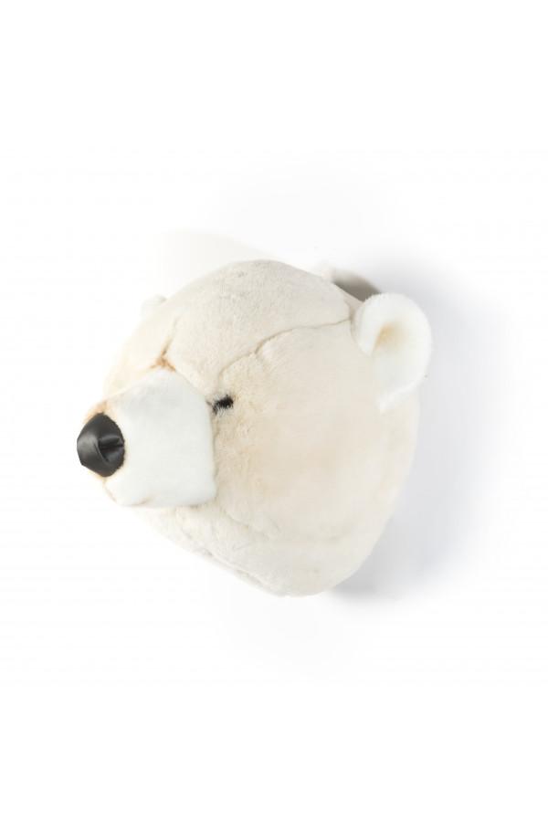 POLAR BEAR BASILE
