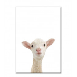 LITTLE SHEEP PRINT