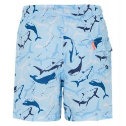 BOYS AQUA SHARK SWIMSHORT